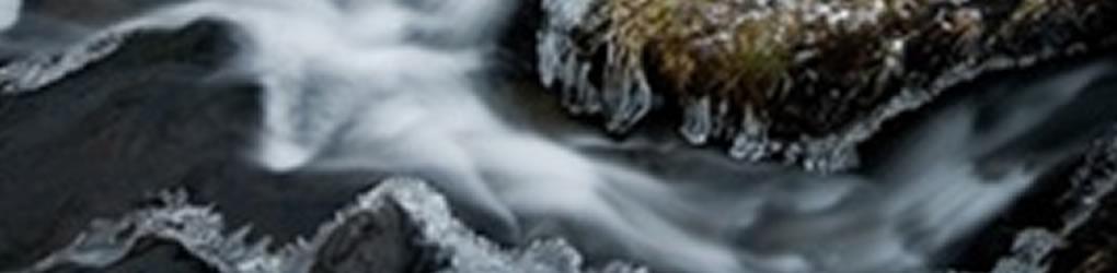 Wave (mix)