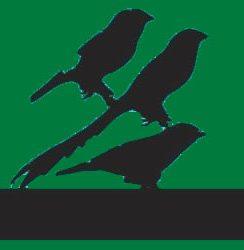 Strange Birds (mix)
