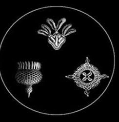 Fovea Hex – Neither Speak Nor Remain Silent (Mix)