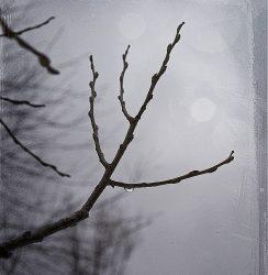 Tristesse D'Automne (Mix)