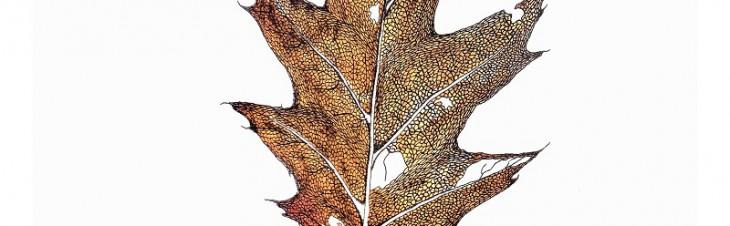became a leaf