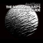 David Fyans - Somnambulist