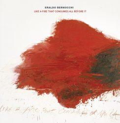 Eraldo Bernocchi * Martin Ptak