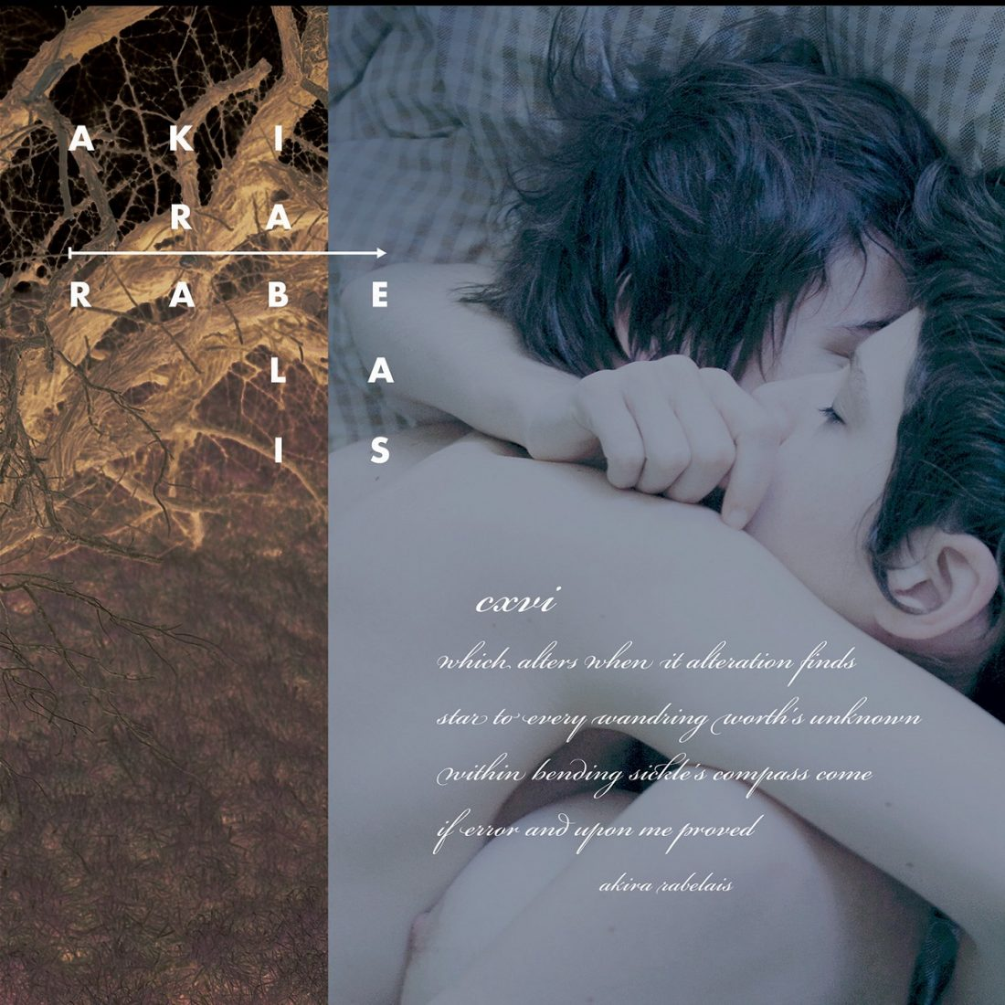 Akira Rabelais - CXVI – Ambientblog