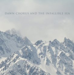 扎克 * Dawn Chorus and the Infallible Sea * Music for Sleep * Luna Monk