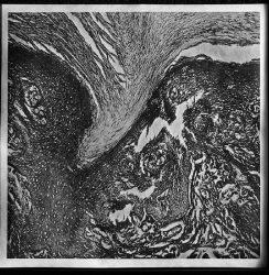 Jacob Kirkegaard – Opus Mors