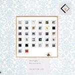 exhibition 100
