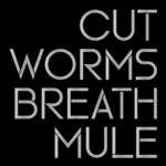 Cut Worms